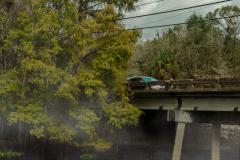 car_fog