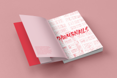 process_book_mockup1